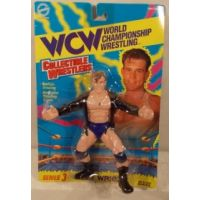 WCW Series 3 Alex Wright (blue trunks) figure Toymakers 8119