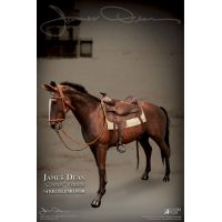 James Dean Horse 1:6 figure Star Ace Toys Ltd 906703