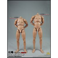 Corps masculin grand format échelle 1:6 New 2_0 COO Model BD002