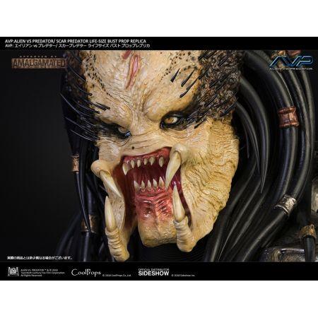 AVP: Alien vs Predator (2004) Scar Predator Prop Replica Buste grandeur nature échelle 1:1 CoolProps 903453