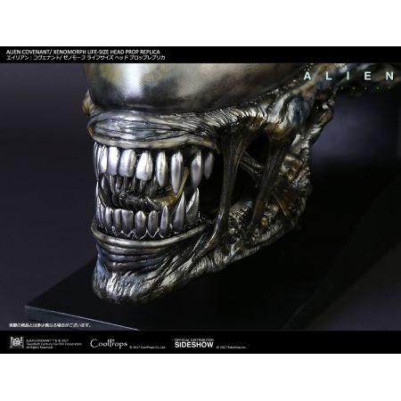 Alien: Covenant Xenomorph tête grandeur nature CoolProps 903191