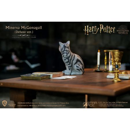 Minerva McGonagall (Desk Pack) 1:6 Scale Figure Accessory Star Ace Toys Ltd 907716