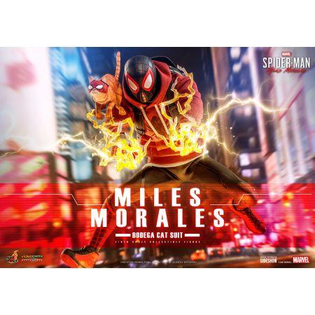 Miles Morales (Bodega Cat Suit) 1:6 Scale Figure Hot Toys 908143