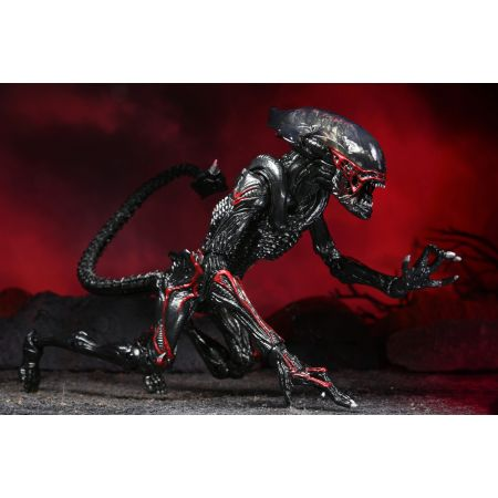 Aliens Kenner Tribute Night Cougar Alien 7-Inch Scale Action Figure NECA 51716