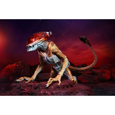 Aliens Kenner Tribute Panther Alien 7-Inch Scale Action Figure NECA 51715