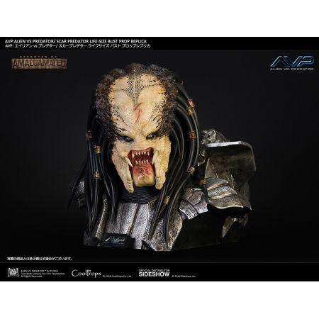 AVP: Alien vs Predator (2004) Scar Predator Prop Replica Buste grandeur nature �chelle 1:1 CoolProps 903453